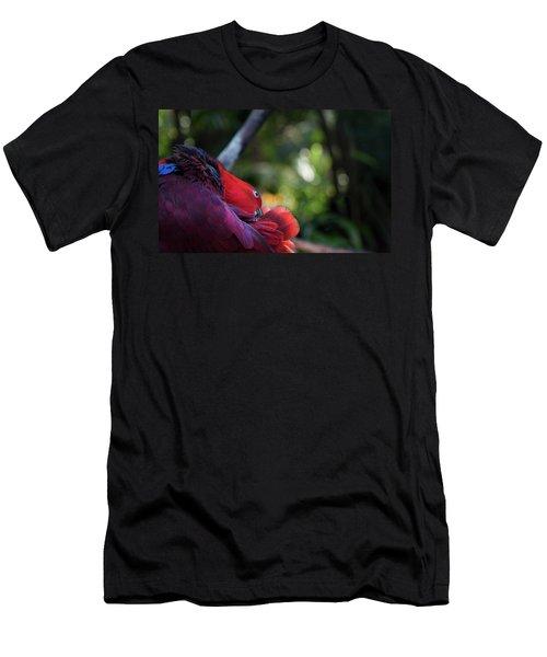 Miksang 4 Parrot Men's T-Shirt (Athletic Fit)