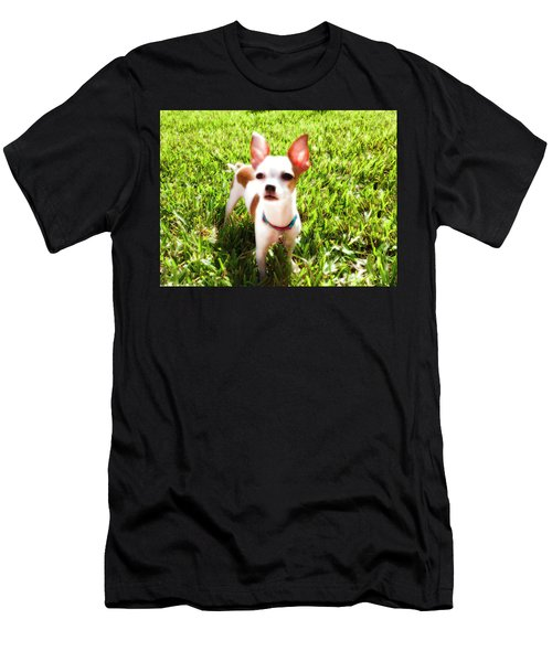 Mini Dog Men's T-Shirt (Athletic Fit)