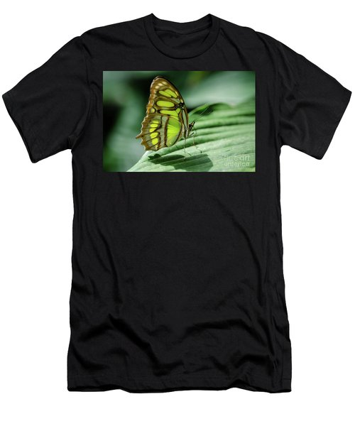 Miss Green Men's T-Shirt (Athletic Fit)