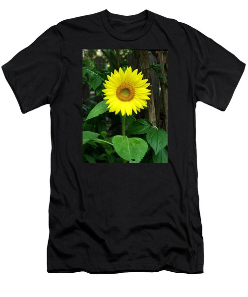 Miss Sunshine Men's T-Shirt (Slim Fit) by Carol Sweetwood