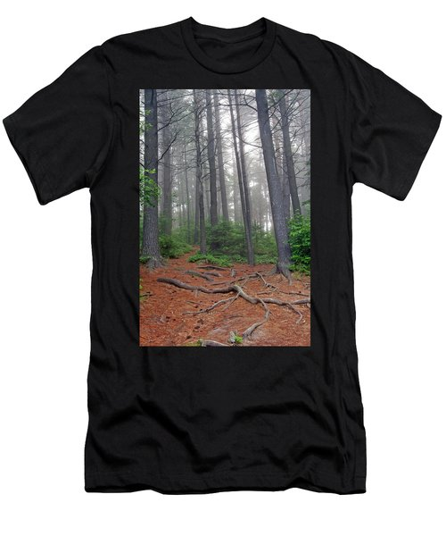 Misty Morning In An Algonquin Forest Men's T-Shirt (Athletic Fit)