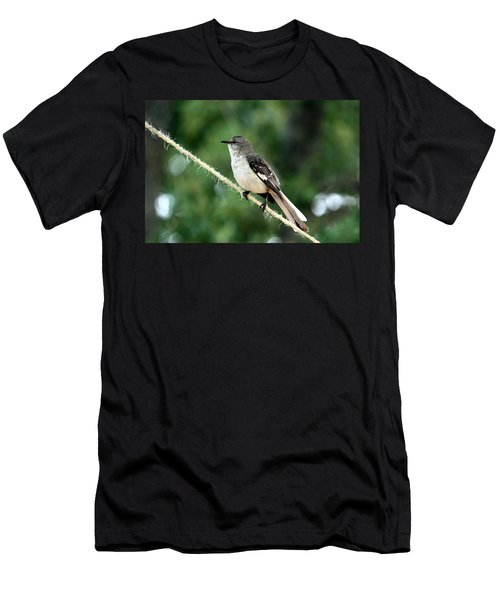 Mockingbird On Rope Men's T-Shirt (Athletic Fit)