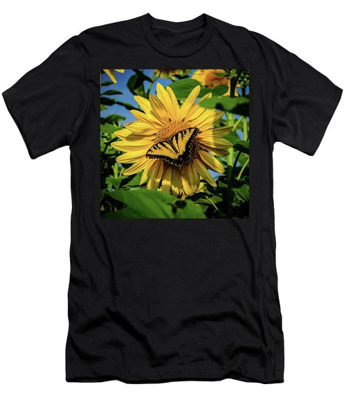 Male Eastern Tiger Swallowtail - Papilio Glaucus And Sunflower Men's T-Shirt (Athletic Fit)