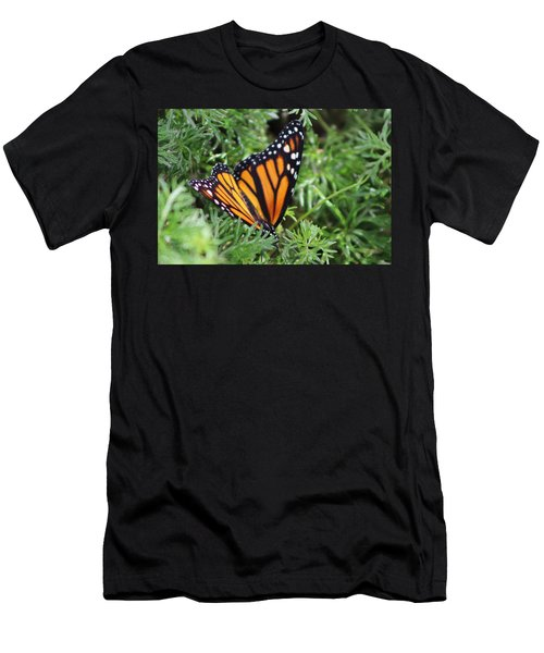 Monarch Butterfly In Lush Leaves Men's T-Shirt (Athletic Fit)