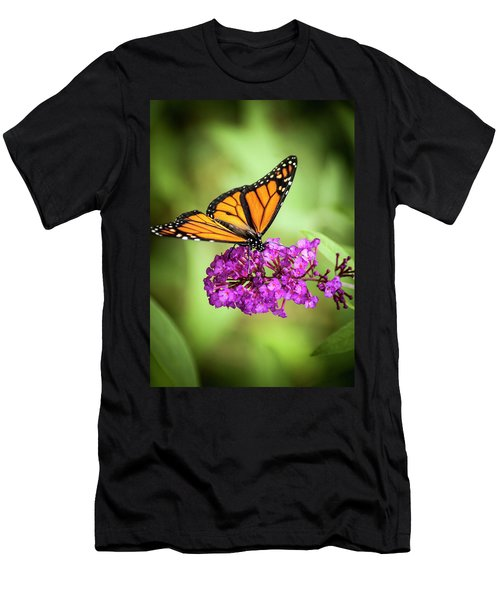 Monarch Moth On Buddleias Men's T-Shirt (Athletic Fit)
