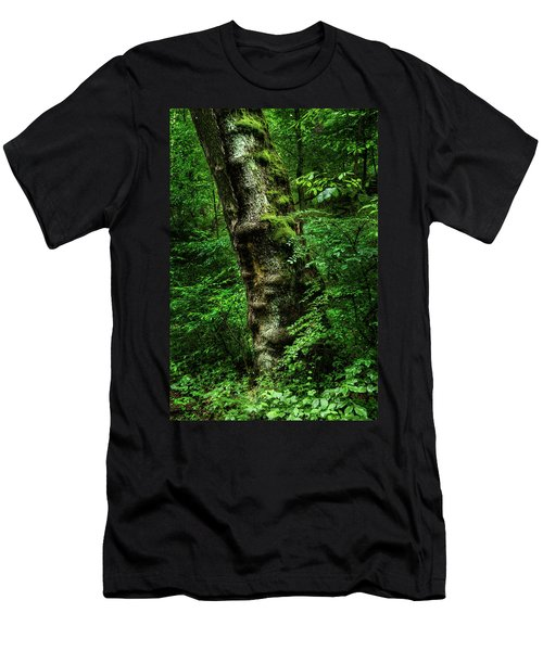 Moody Tree In Forest Men's T-Shirt (Athletic Fit)