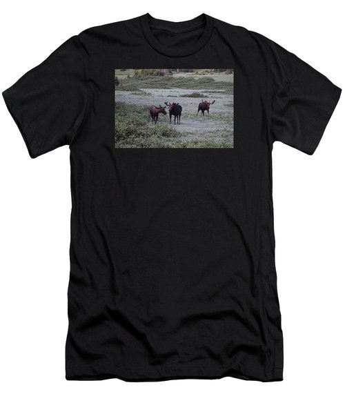 Moose Cameron Pass Co Men's T-Shirt (Athletic Fit)