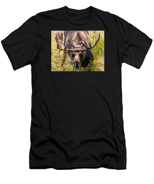 Men's T-Shirt (Slim Fit) featuring the photograph Moose by Cathy Donohoue