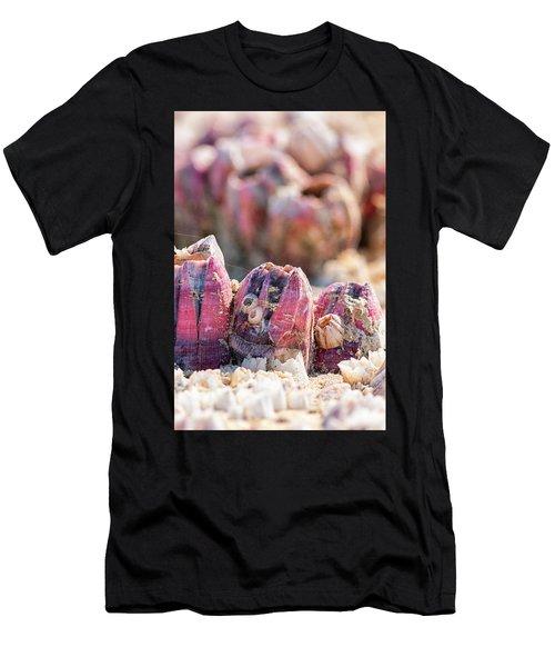 More Barnacles Men's T-Shirt (Athletic Fit)