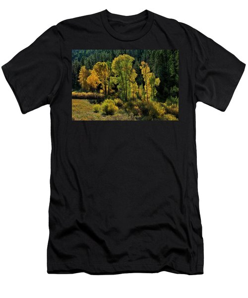 Men's T-Shirt (Athletic Fit) featuring the photograph Morning Cottonwoods by Ron Cline