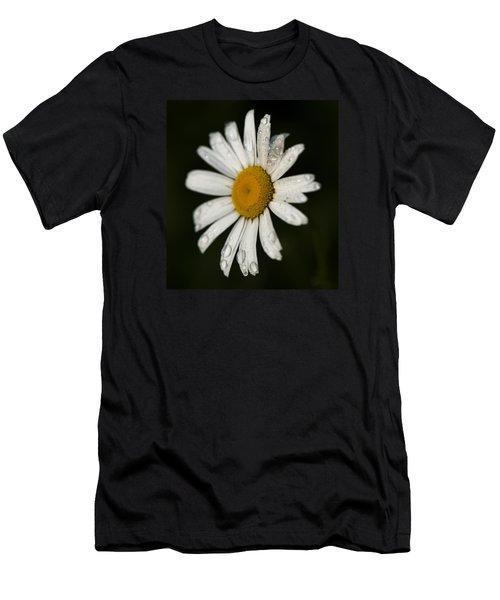 Morning Daisy Men's T-Shirt (Athletic Fit)