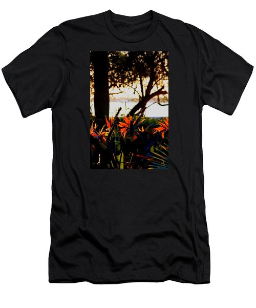 Morning In Florida Men's T-Shirt (Athletic Fit)