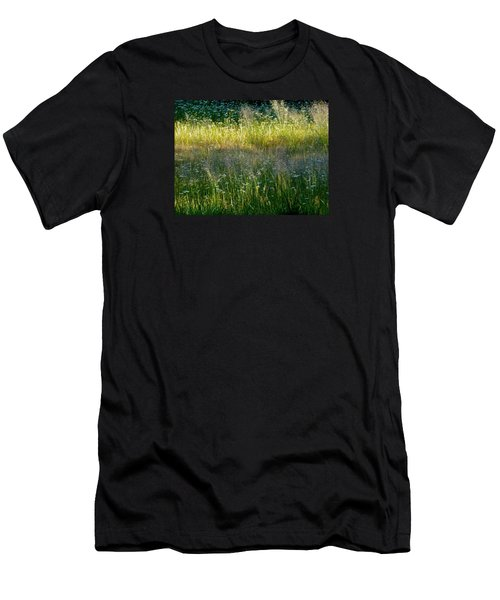 Morning Light On Grant Meadow Men's T-Shirt (Slim Fit) by Amelia Racca