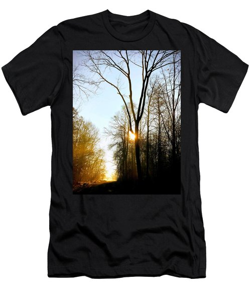 Morning Mood In The Forest Men's T-Shirt (Athletic Fit)