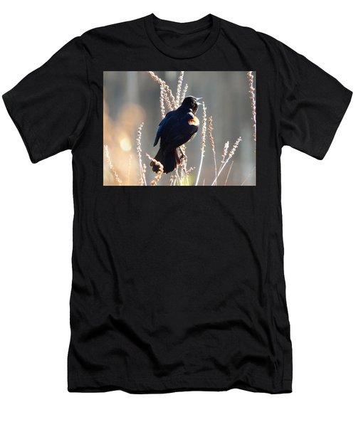 Morning Music Men's T-Shirt (Athletic Fit)