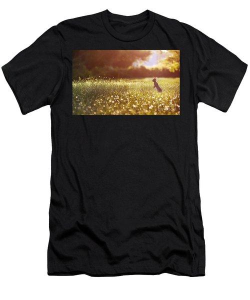 Morning Rabbit Men's T-Shirt (Athletic Fit)