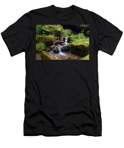 Mossy Glenn Spring 2 Men's T-Shirt (Slim Fit) by Bonfire Photography