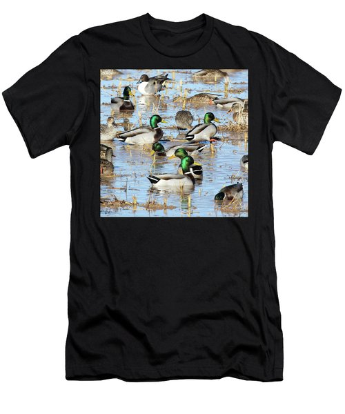 Mostly Mallards Men's T-Shirt (Athletic Fit)