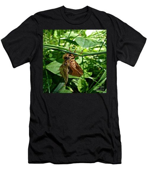 Moth At Rest Men's T-Shirt (Athletic Fit)