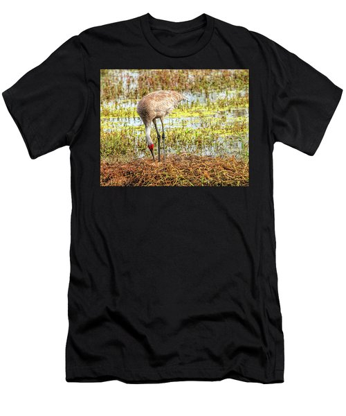 Mother Rearranging Her Eggs In The Nest Men's T-Shirt (Athletic Fit)