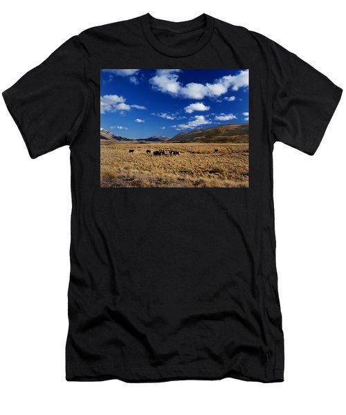 Mount Nicholas Station New Zealand Men's T-Shirt (Athletic Fit)