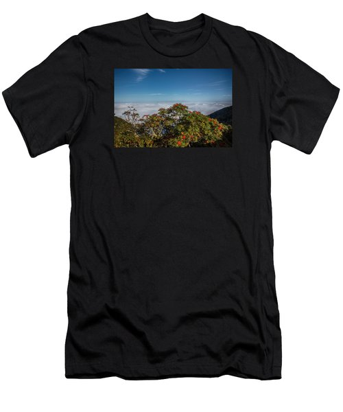 Mountain Ash Berries Above The Clouds Men's T-Shirt (Athletic Fit)