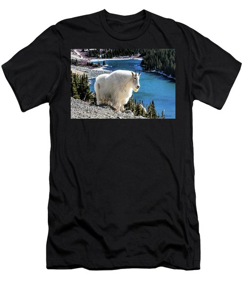 Mountain Goat At Lower Blue Lake Men's T-Shirt (Athletic Fit)