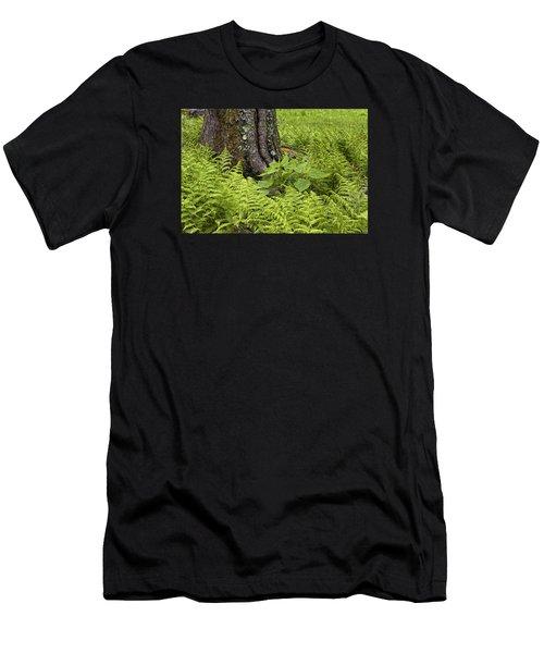 Men's T-Shirt (Athletic Fit) featuring the photograph Mountain Green Ferns by Ken Barrett