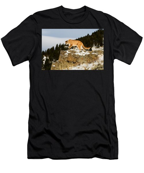 Mountain Lion On Rocks Men's T-Shirt (Athletic Fit)
