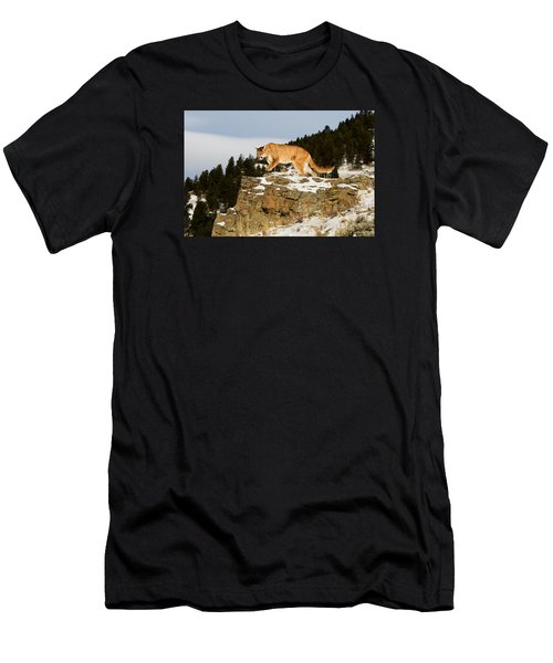 Mountain Lion On Rocks Men's T-Shirt (Athletic Fit)