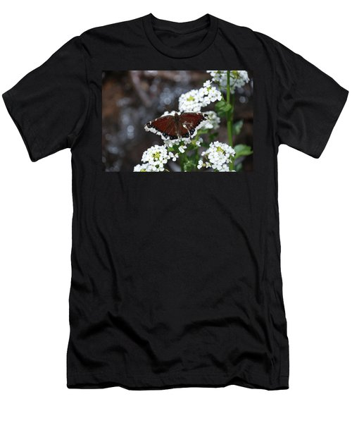 Mourning Cloak Men's T-Shirt (Athletic Fit)