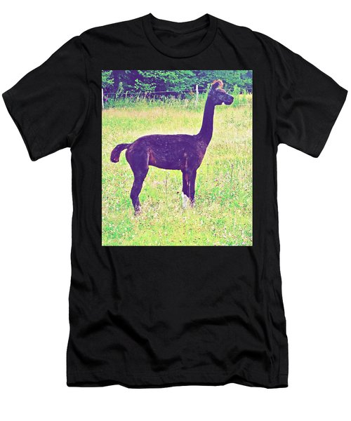 Mr Alpaca Men's T-Shirt (Athletic Fit)
