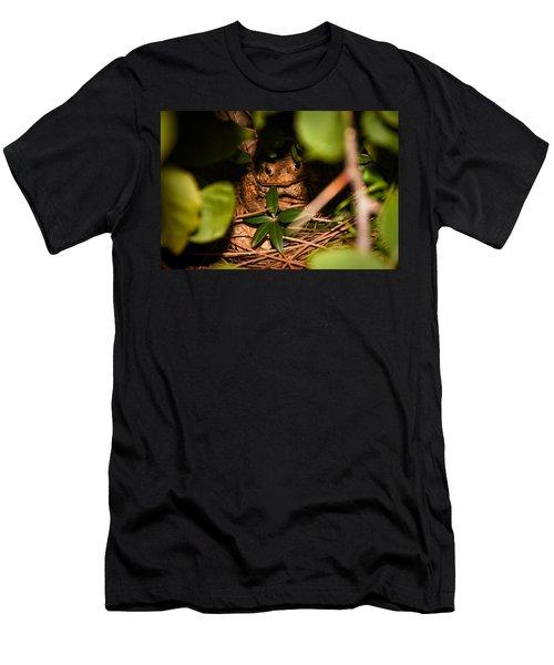 Mr Frog Men's T-Shirt (Athletic Fit)