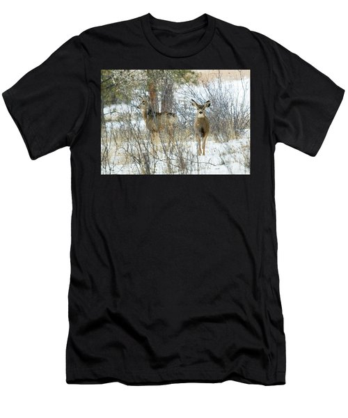Mule Deer Does In Snow Men's T-Shirt (Athletic Fit)