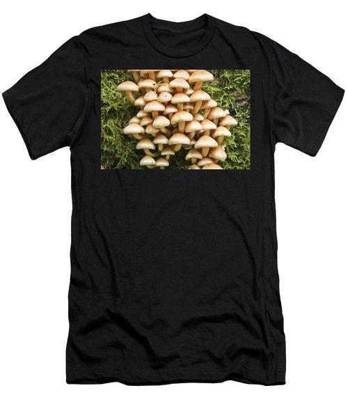 Mushroom Condo Men's T-Shirt (Athletic Fit)
