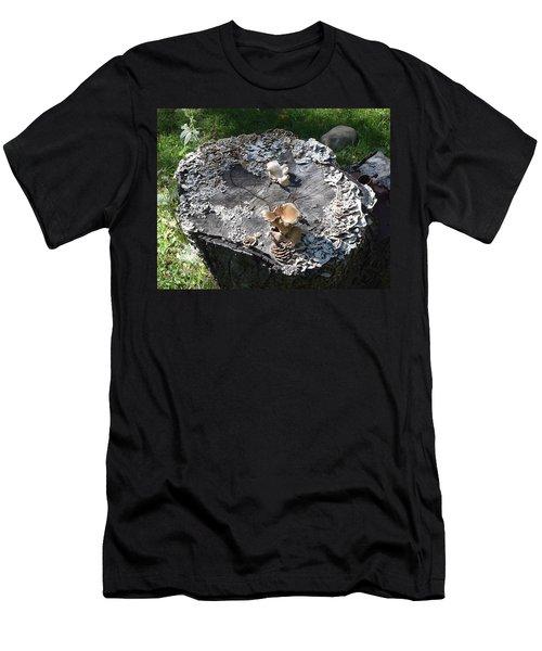 Mushroom Stump Men's T-Shirt (Athletic Fit)