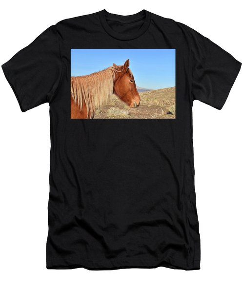 Mustang Mare Men's T-Shirt (Athletic Fit)