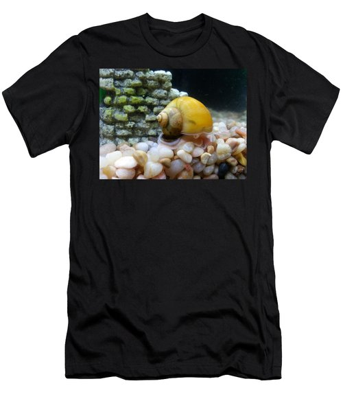 Mystery Snail Men's T-Shirt (Athletic Fit)