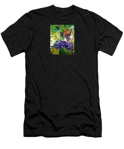 Napa Harvest Men's T-Shirt (Athletic Fit)