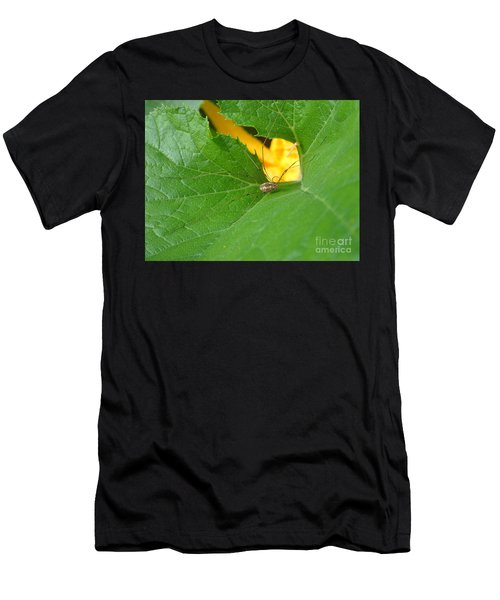 Narrow Leaf Gorge Men's T-Shirt (Athletic Fit)