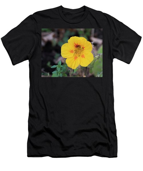 Nasturtium And Thyme Men's T-Shirt (Athletic Fit)