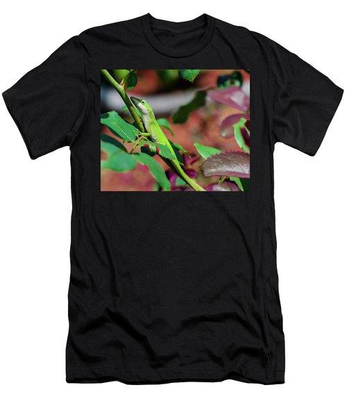 Native Anole Men's T-Shirt (Slim Fit) by Stefanie Silva
