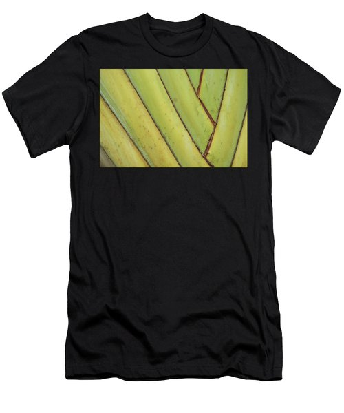 Nature Background, Green Leaves, Flowers In Natural Light And Sh Men's T-Shirt (Athletic Fit)