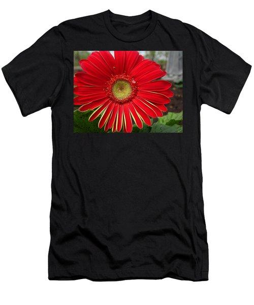 Natures Best Men's T-Shirt (Athletic Fit)
