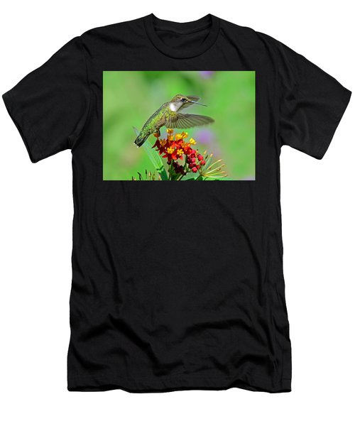 Nature's Majesty Men's T-Shirt (Athletic Fit)