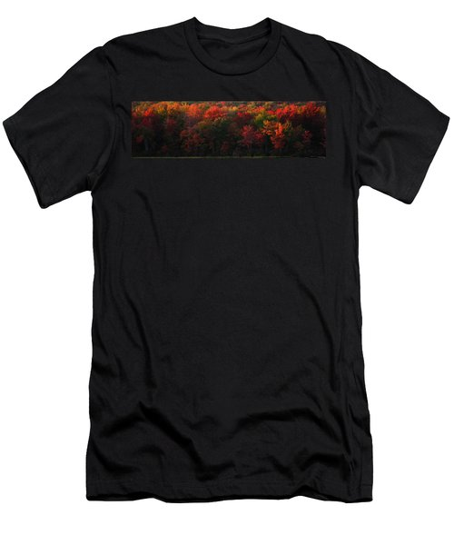 Nature's Palette Men's T-Shirt (Athletic Fit)