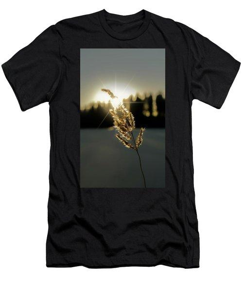 Nature's Stars Men's T-Shirt (Athletic Fit)