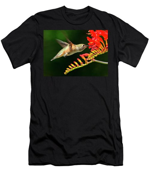 Nectar Time Men's T-Shirt (Athletic Fit)
