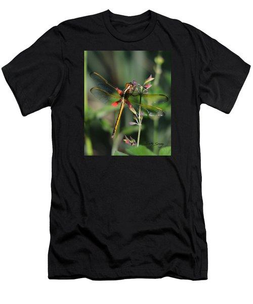 Needham's Skimmer Men's T-Shirt (Athletic Fit)