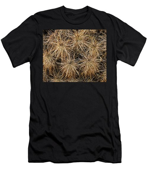 Needles And Hay Stacks Men's T-Shirt (Athletic Fit)